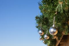 Christmas Backgrounds. Christmas tree and Christmas toys Royalty Free Stock Photography