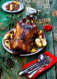 The Christmas baked goose with apples Stock Image