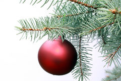 Christmas ball. Red christmas ball as that year royalty free stock image