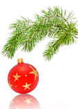 Christmas ball. Christmas ball and Christmas tree  isolated on the white background Royalty Free Stock Photos