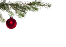 Christmas ball. Red christmas ball hanging in christmas tree Royalty Free Stock Image