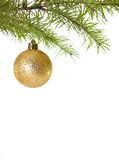 Christmas ball. Hanging in Christmas tree Royalty Free Stock Photo