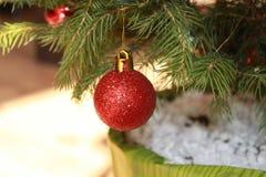 Christmas Ball. On a Christmas tree Stock Images