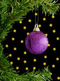 Christmas ball. Hanging in tree on black background with gold stars Royalty Free Stock Photos