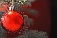 Christmas ball. On fir tree Royalty Free Stock Photo