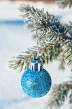 Christmas ball on a branch of a Christmas tree in frost and snow. Branches of spruce in blue frost and snow with christmas ball Royalty Free Stock Image