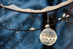 Christmas ball on branch Stock Photo