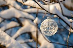 Christmas ball on branch Royalty Free Stock Photo