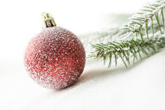 Christmas ball and branch on snow Stock Photography