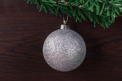 Christmas Ball with Branche Stock Photography