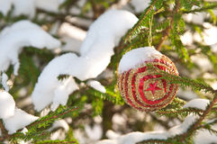 Christmas ball at the Christmas tree Royalty Free Stock Images