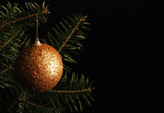 Christmas ball on the Christmas tree Royalty Free Stock Images