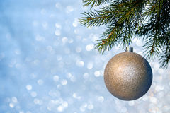 Christmas Ball on a Christmas Tree Branch Royalty Free Stock Image