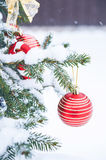 Christmas ball on the Christmas tree in the snow. Red christmas ball on the Christmas tree Stock Photos