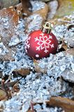 Christmas ball on dead leaves Stock Photography