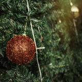 Christmas ball decoration  on green tree Stock Images