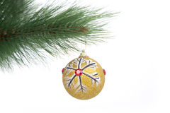 Christmas ball decoration hanging on a tree Stock Image