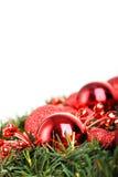 Christmas ball on fir Stock Photography