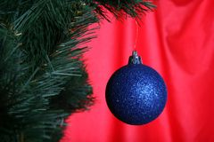 Christmas ball in fir Stock Photography