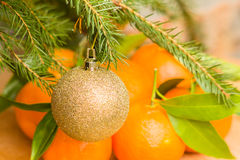 Christmas ball on fir branch on a background of tangerines Royalty Free Stock Photo