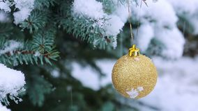 Christmas Ball on the Fir Branch covered with Snow. Christmas Background. Golden Christmas Ball hanging on a Tree Branch in the Snow Winter Forest stock footage