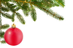 Christmas Ball With Fir Branch Royalty Free Stock Images