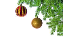 Christmas ball on fir tree Royalty Free Stock Image