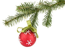 Christmas ball on fir tree Royalty Free Stock Photos