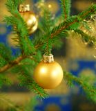 Christmas ball on fir-tree branch Royalty Free Stock Images