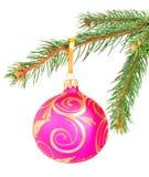 Christmas ball on a fir tree branch Stock Photography
