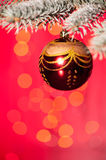 Christmas ball on fir tree branch Royalty Free Stock Photography