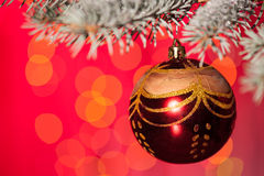 Christmas ball on fir tree branch Stock Images