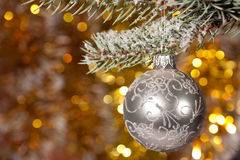 Christmas ball on fir tree branch Stock Photos