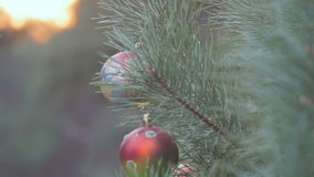 Christmas ball on a fir tree branch. With snow stock video