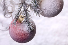 Christmas ball on fir tree. New Year decoration on snow-covered Stock Photos