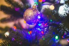 Christmas Ball on Green Christmas Tree Royalty Free Stock Images