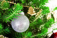 Christmas ball and green spruce branch Stock Images
