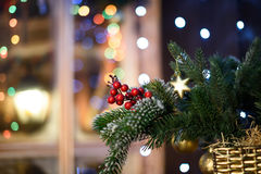 Christmas ball on green spruce branch.  Stock Photo