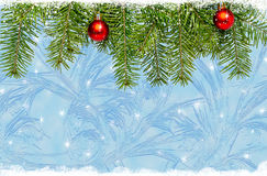 Christmas ball and green spruce branch on a blue background Stock Photos
