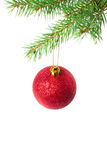 Christmas ball on green spruce branch Stock Photo