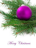 Christmas ball and green spruce branch Royalty Free Stock Photo