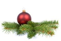 Christmas ball on a green tree. Red christmas ball on a branch of green Christmas tree royalty free stock photos