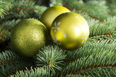 Christmas ball handing on a tree. Stock Photography