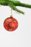 Christmas ball hanging on a branch Royalty Free Stock Photos