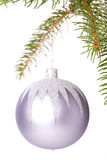 Christmas ball hanging from a branch of a fir tree Stock Photo