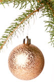 Christmas ball hanging from a branch of a fir tree Stock Photos
