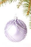 Christmas ball hanging from a branch of a fir tree Royalty Free Stock Images