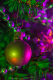 Christmas ball hanging in a Christmas tree Stock Photos