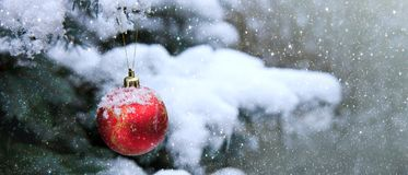 Christmas Ball hanging on a Fir Tree Branch. Christmas Background. royalty free stock photos