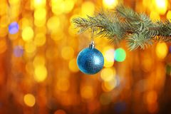 Christmas ball hanging on fir tree branch Royalty Free Stock Photography